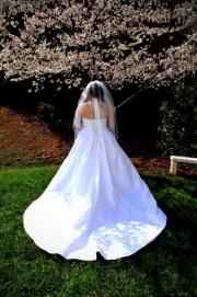 Cavender Castle Weddings 088